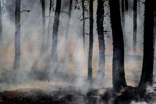 smoke from wild fire